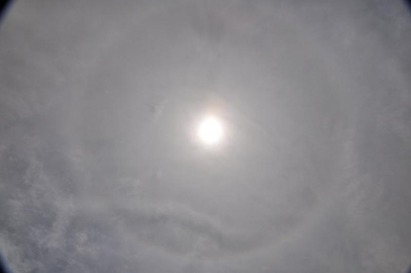 Sun Rings
