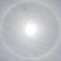 Sun Rings 5